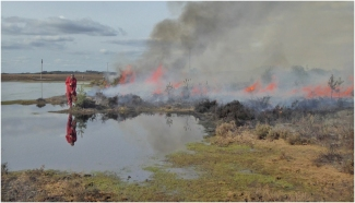 01 Caution Controlled Burning in Operation